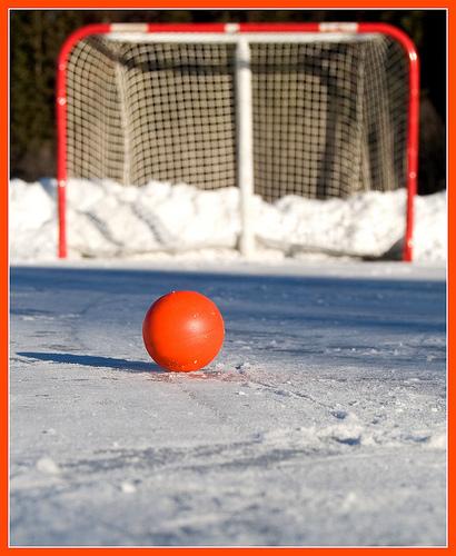 Top 12 Backyard-Hockey Posts
