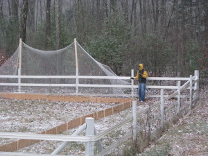 Finishing the build on my first-ever rink - November 2008.
